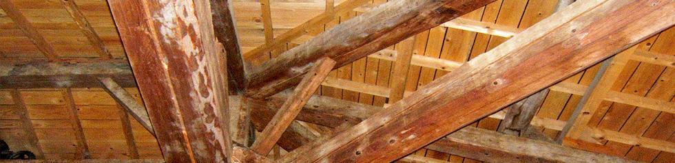 Lasure de finition des bois.